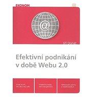 Efektivní podnikání v době Webu 2.0 - Kniha