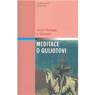Meditace o Quijotovi - Kniha