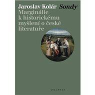 Sondy: Marginálie k historickému myšlení o české literatuře - Kniha