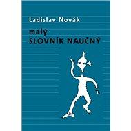Malý slovník naučný - Kniha