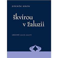 Škvírou v žaluzii: [Básně 2005 - 2007] - Kniha