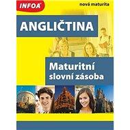 Angličtina Maturitní slovní zásoba: nová maturita - Kniha