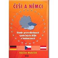 Češi a Němci: Studie proveditelnosti společných dějin a budoucnosti - Kniha