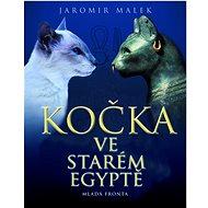Kočka ve starém Egyptě - Kniha