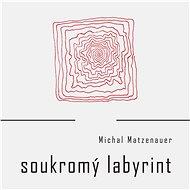 Soukromý labyrint - Kniha