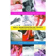 Můj horizontální život: Muži na jednu noc - Kniha
