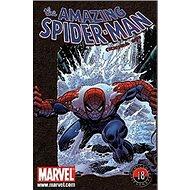 Amazing Spider-Man: Comicsové legendy 18 - Kniha