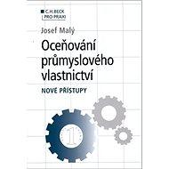 Oceňování průmyslového vlastnictví: Nové přístupy - Kniha