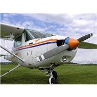 Allegria Staňte se pilotem - Voucher - letecký zážitek