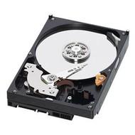 WD Caviar Blue 750GB 32MB cache - Pevný disk