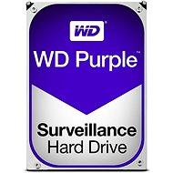 WD Purple NV 10TB - Pevný disk