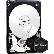 WD Black Mobile 320GB - Pevný disk