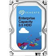 Seagate Enterprise Capacity 8TB SAS - Pevný disk