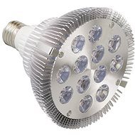 Growlight LED 12W FS stříbrná - Žárovka