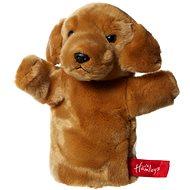 Hamleys Zlatý labrador - Maňásek