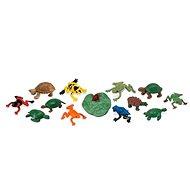 Safari Ltd. Tuba - Žáby a želvy - Vzdělávací sada