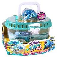 Little Live Pets - Želví nádrž - Interaktivní hračka