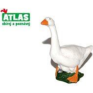 Atlas Husa - Figurka