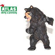 Atlas Medvěd baribal  - Figurka
