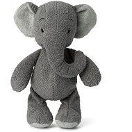 Ebu Slon šedý