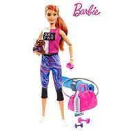 Barbie Wellness panenka s karimatkou - Panenka