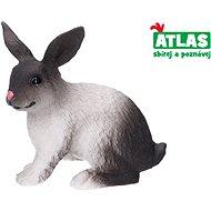 Atlas Králík