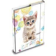 Desky na sešity MFP box A5 Kočka - Školní desky