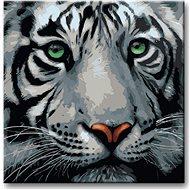 Malování podle čísel - Hlava bílého tygra - Malování podle čísel