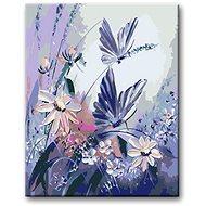 Malování podle čísel - Motýli - Malování podle čísel