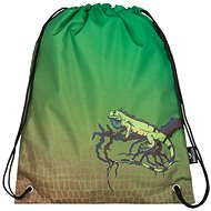 Bagmaster Slipper bag Galaxy 7E - Shoe Bag