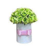 Květinový box LUXURY ze zelených růží 38 cm - Dárkový box