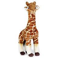 National Geografic Zvířátka ze savany 770718 Žirafa 35 cm - Plyšák