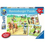 Ravensburger 051298 Koně 3x49 dílků