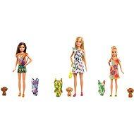 Barbie Dha Sestra s plavkami - Panenky