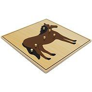 Puzzle - kůň - Vkládačka