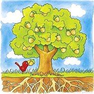 Goki strom - vývojové vrstvené puzzle - Puzzle