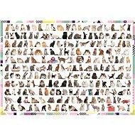 Trefl Puzzle 208 koček 1000 dílků - Puzzle