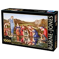 D-TOYS Puzzle Zrcadlo Venuše 1000 dílků - Puzzle