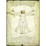 Eurographics Puzzle Vitruvianský muž - proporce lidské postavy 1000 dílků - Puzzle