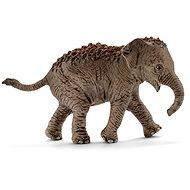 Schleich 14755 Asijský slon mládě - Figurka