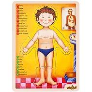 Woody Puzzle - lidské tělo - Puzzle