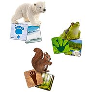Schleich Educational Cards - Wild life Schleich