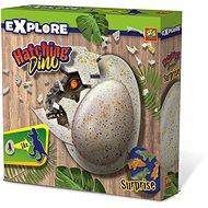 SES Hatching Dinosaur - Creative Kit