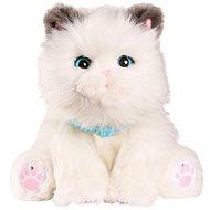 Little Live Pets Moje vysněné koťátko - Interaktivní hračka