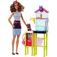 Barbie Povolání Pečovatelka o pejsky