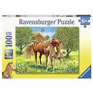 Ravensburger 105779 Koně na pastvině  - Puzzle