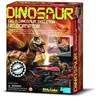 Dinosauří kostra - velociraptor - Experimentální sada