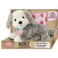 Scruffies Roxy Moje roztomilé štěňátko