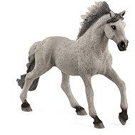 Schleich 13915 Zvířátko - hřebec Sorraia Mustang