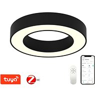 Immax NEO PASTEL 07097L Smart LED 60cm 52W černé